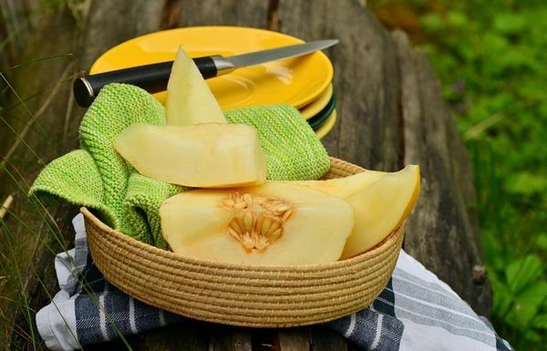 Дыня: польза и вред для здоровья мужчин и женщин, для печени и поджелудочной
