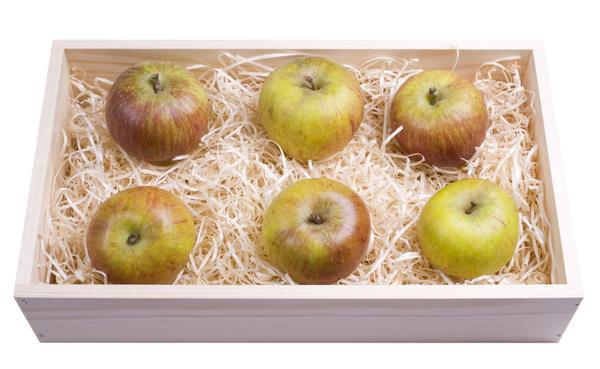 Как сохранить яблоки свежими на зиму в подвале и квартире: 6 лучших способов